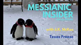 Texas Freeze Special Report - Messianic Insider