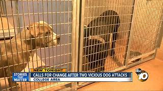 Calls for change after two vicious dog attacks - Video