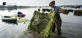 In a male-dominated fishing industry, women blazing new trails during COVID-19 pandemic