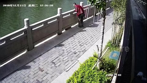 Shocking moment as Chinese man kicks cat into river