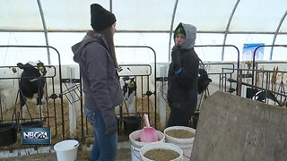 Farming mentor program setting students up for success