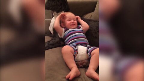 Baby and Great Dane are Best Buddies