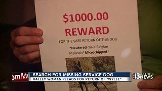 Valley woman pleads for safe return of missing service dog - Video