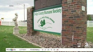 Dodge County Humane Society director tampered with evidence, officer says in testimony