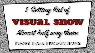 1: Getting rid of Visual Snow. Almost halfway there! 4K. Poofy Hair Productions