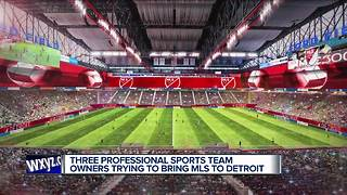 Ford family joins bid for Detroit MLS team with Ford Field as stadium - Video