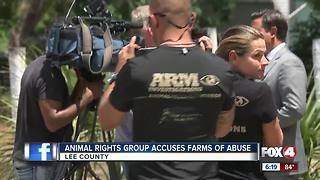 Animal Rights Group Accuses Farms of Abuse - Video