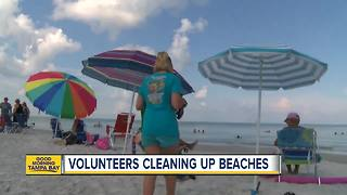 Volunteers keeping Indian Rocks Beach trash free - Video