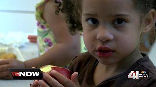 SMSD kicks off summer lunch program
