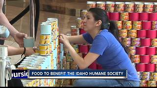 Charitable art on display at Boise Towne Square Mall - Video