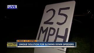 Neighbor posts homemade speed limit sign to reduce dangerous driving along South Church Avenue | Driving Tampa Bay Forward - Video