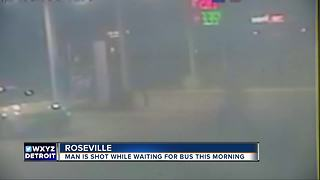 Detroit man shot while waiting for bus in Roseville - Video
