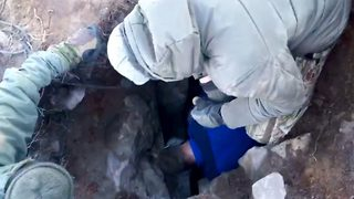 Brave rescuers spend 72 hours drilling through solid rock to save dog - Video