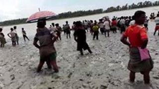 Rohingya Fleeing Violence Stranded on Border to Bangladesh - Video