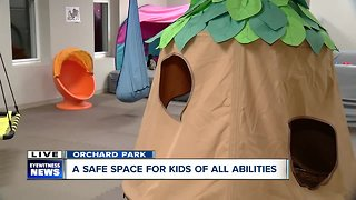 A safe space for kids of all abilities in Orchard Park