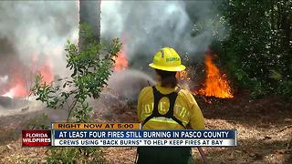 Crews using 'back burns' to help keep fires at bay in Pasco Co. - Video