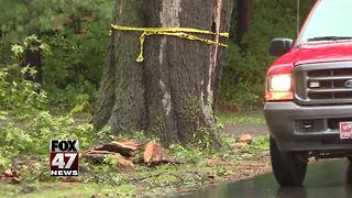 Neighbors say accident was preventable - Video