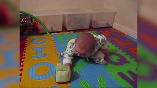 """""""Baby Trying To Reach a Toy"""""""