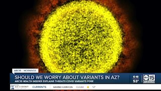 Should we worry about COVID-19 variants in AZ?