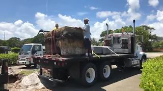 Confederate monument removed in West Palm Beach - Video
