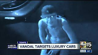 Luxury cars vandalized at Tempe car dealership - Video