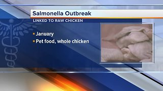 Salmonella outbreak sickens nearly 100 people in 29 states, including Michigan - Video
