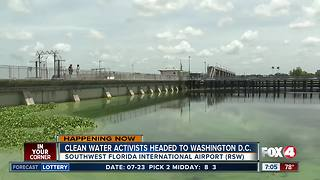 Clean water activists head to D.C. to tackle blue-green algae problem - Video