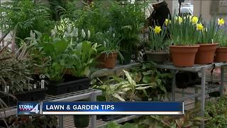 Gardening tips for this spring - Video