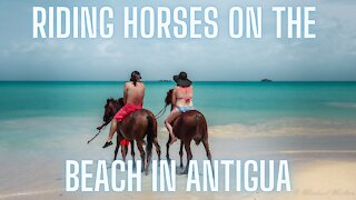 Vlog #8 Riding Horses on a beach with Fire!