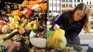 Following Waste: From Food to Compost - Video