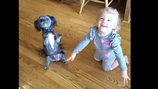 Mom teaches dog and daughter same trick