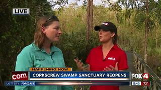 Parts of Corkscrew Swamp Sanctuary reopens after Irma - Video