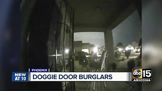 Suspect breaks into Phoenix home through doggy door - Video