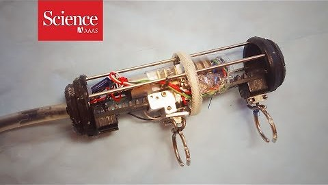 Tiny robots could help infants with rare diseases. Watch one in action