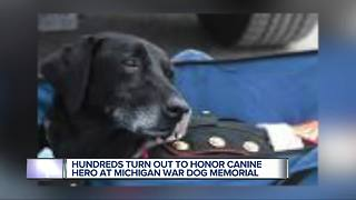 Marine dog laid to rest in Oakland County after battling cancer - Video