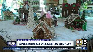 Gingerbread village on display in Phoenix - Video
