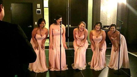 Bridesmaids speech delivered through epic parody song