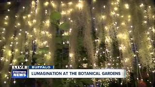 Lumagination 2018 at the botanical gardens - Video
