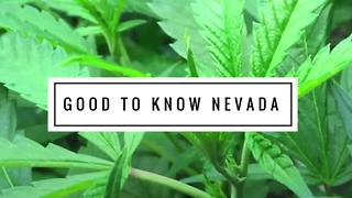 Good to Know Nevada marijuana campaign addresses child safety - Video