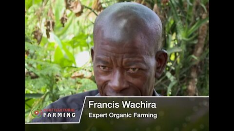 He does organic farming and still gets maximum output - Horticulture