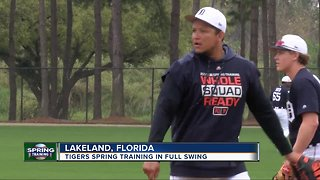 Tigers spring training in full swing - Video