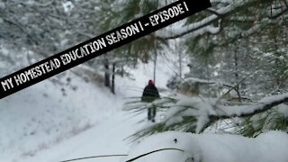 My Homestead Education Season 1 Episode 1