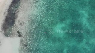Stunning drone footage of swimmer enjoying Bahamian waters