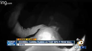 VIsta thief targets Ring doorbell camera
