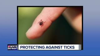 How to avoid tick-borne illnesses this summer - Video