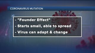 Ask Dr. Nandi: Mutation could make coronavirus more infectious, study suggests