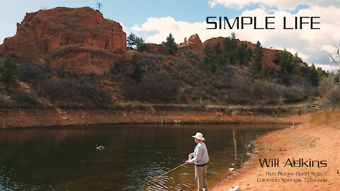 SIMPLE LIFE | Will Adkins [Official Lyric Video]