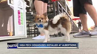 High-tech dog houses installed at Albertsons