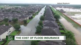 Don't Waste Your Money: The cost of flood insurance - Video