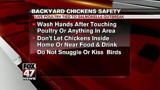 Multi-state outbreak of salmonella linked to backyard chickens